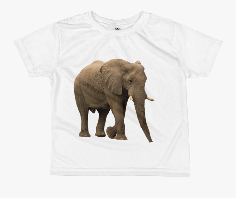 African Forrest Elephant Print All Over Kids Sublimation Elefante Africano Elefante Fondo Blanco Free Transparent Clipart Clipartkey Download the elephant, animals png on freepngimg for free. clipartkey