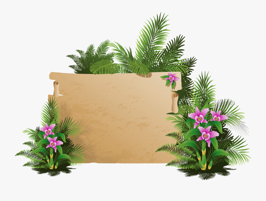 Exotic Clipart Summer Holiday - Vector Frame Tropical Plants, Transparent Clipart