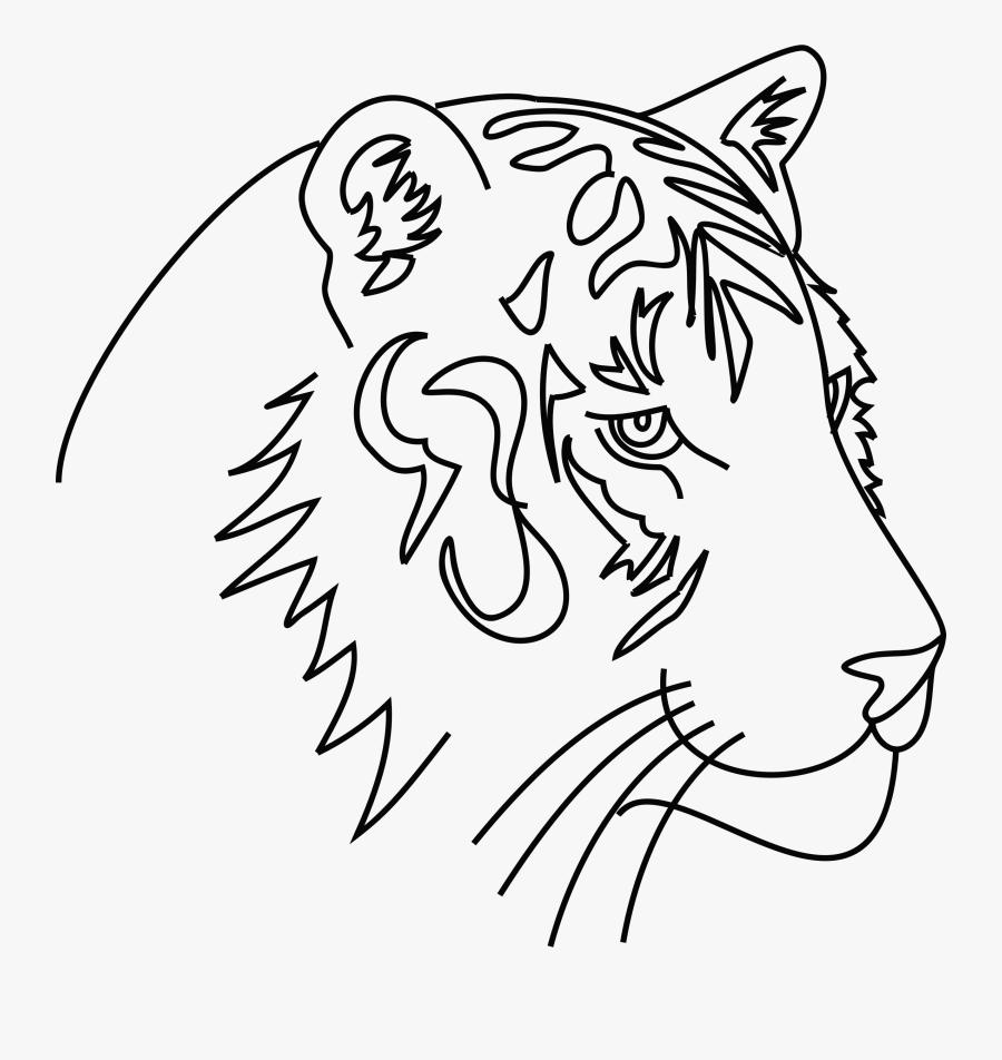 Tiger Line Art Clip Arts - Gambar Ilustrasi Hewan Harimau, Transparent Clipart