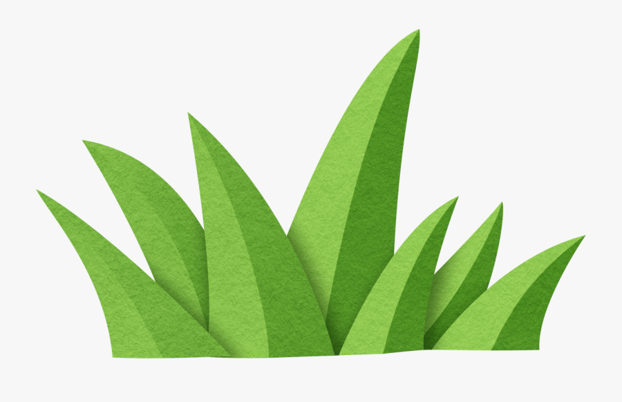 Transparent Jungle Plant Clipart - Sabal Minor, Transparent Clipart