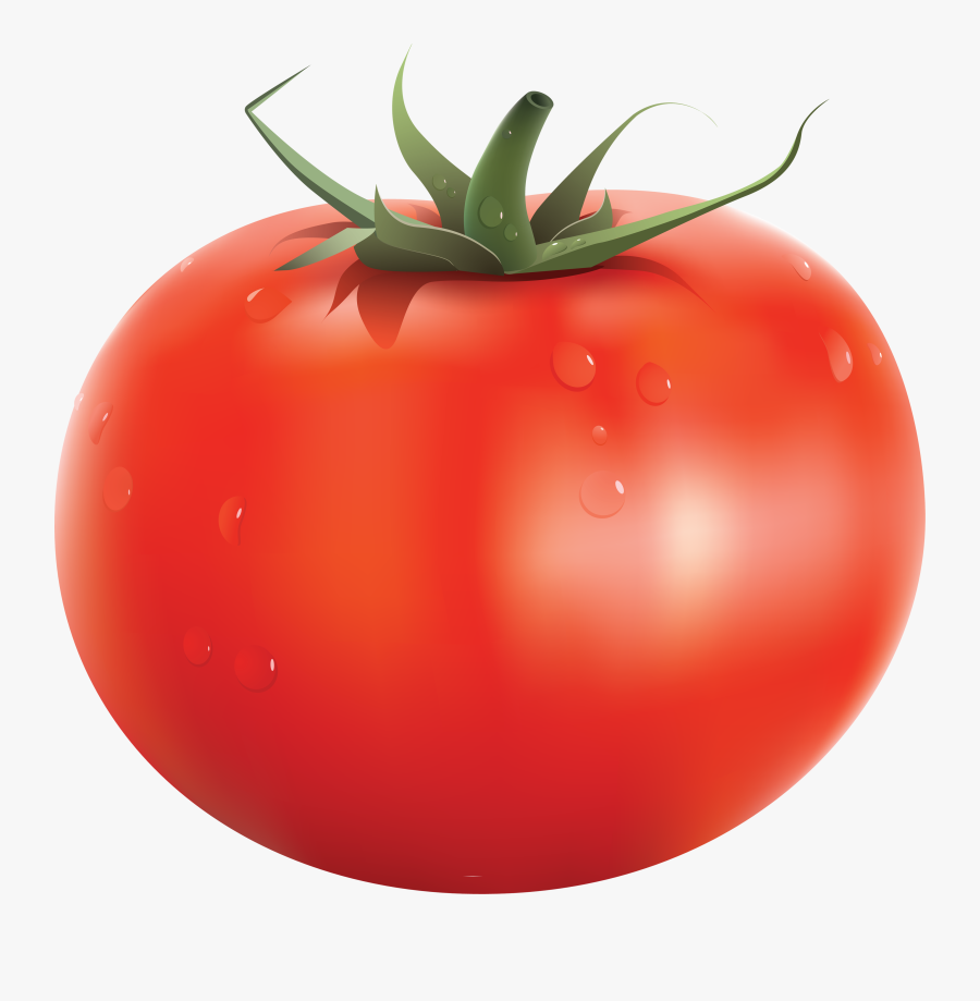 Tomatoes Drawing Red Tomato Transparent Png Clipart - Tomato Png, Transparent Clipart