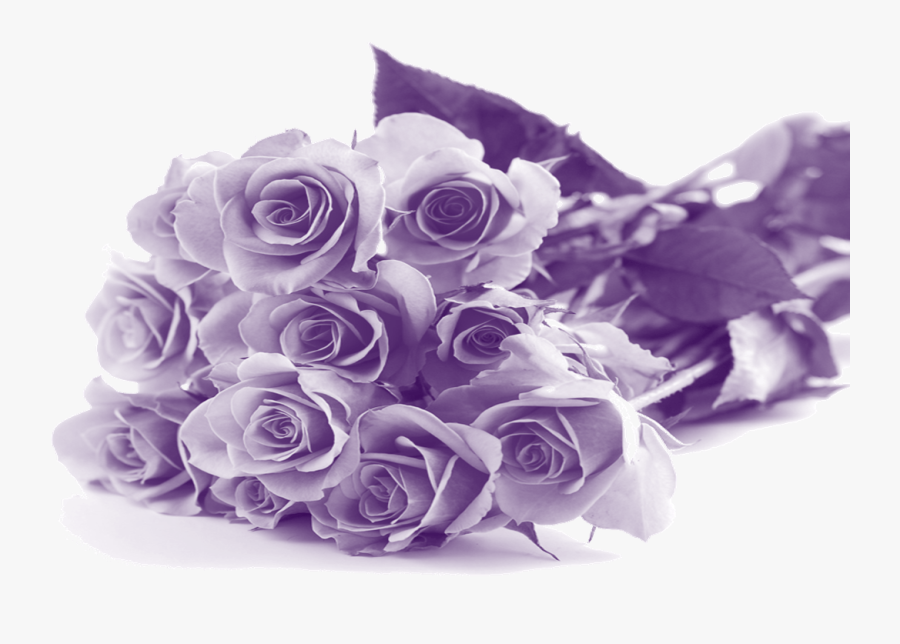 Happy Mothers Day Purple Flowers - Mothers Day Purple Flowers, Transparent Clipart