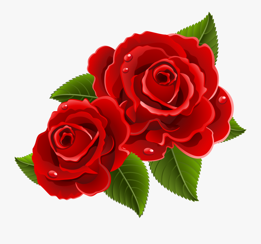 Picture Black And White Download Beauty Beast Rose Beautiful Red Rose Flowers Free Transparent Clipart Clipartkey