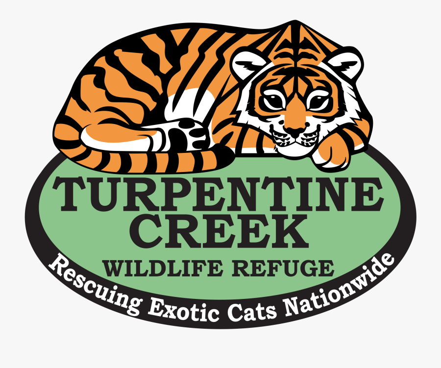 Turpentine Creek Wildlife Refuge - Eureka Springs Big Cat Refuge, Transparent Clipart