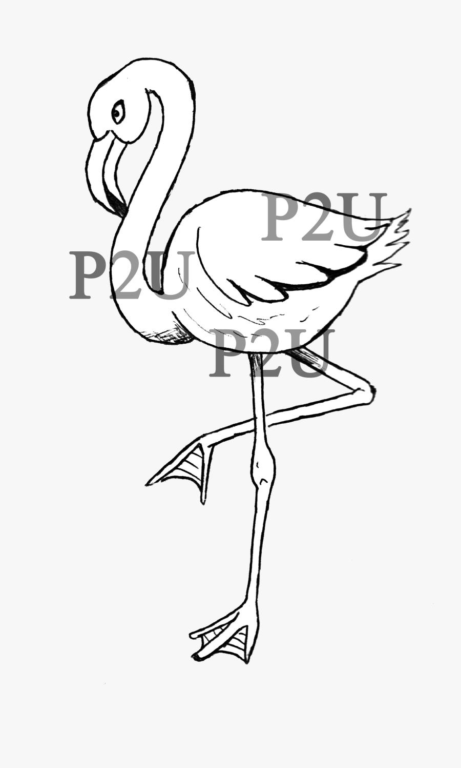 Clip Art Flamingo Line Art - Flamingo Lineart, Transparent Clipart
