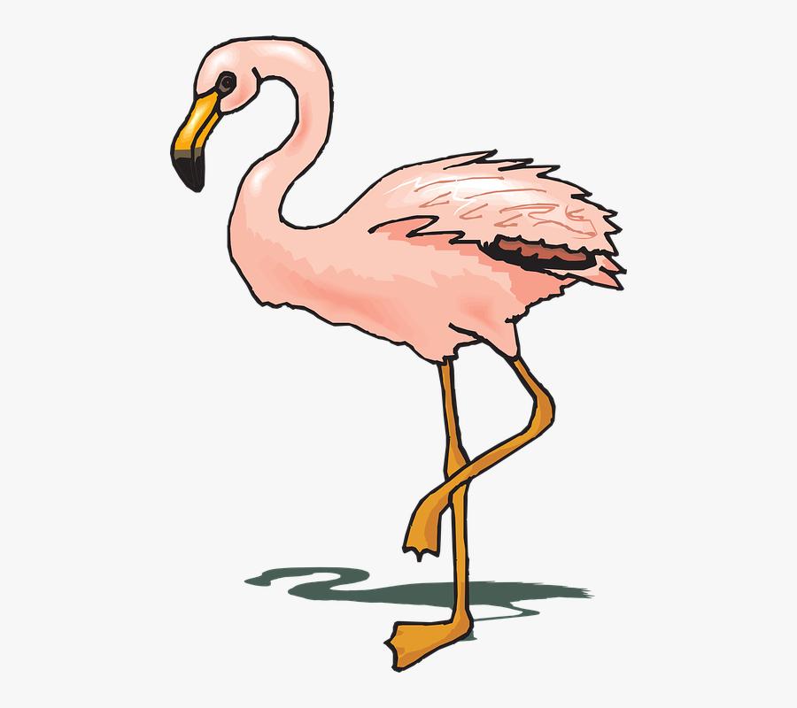 Sunglasses Clipart Flamingo - Gambar Ilustrasi Flamingo, Transparent Clipart