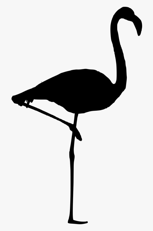 Bird,beak,water Bird,crane Like And White,flamingo,clip - Flamingo Silhouette Png, Transparent Clipart