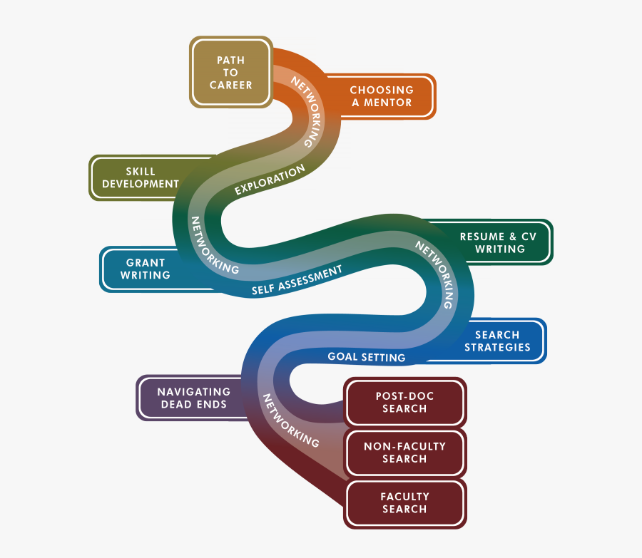 Image Of Career - Career Development Path, Transparent Clipart
