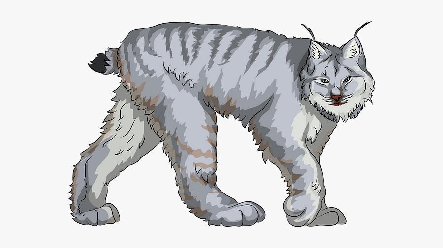 Cat Yawns, Transparent Clipart