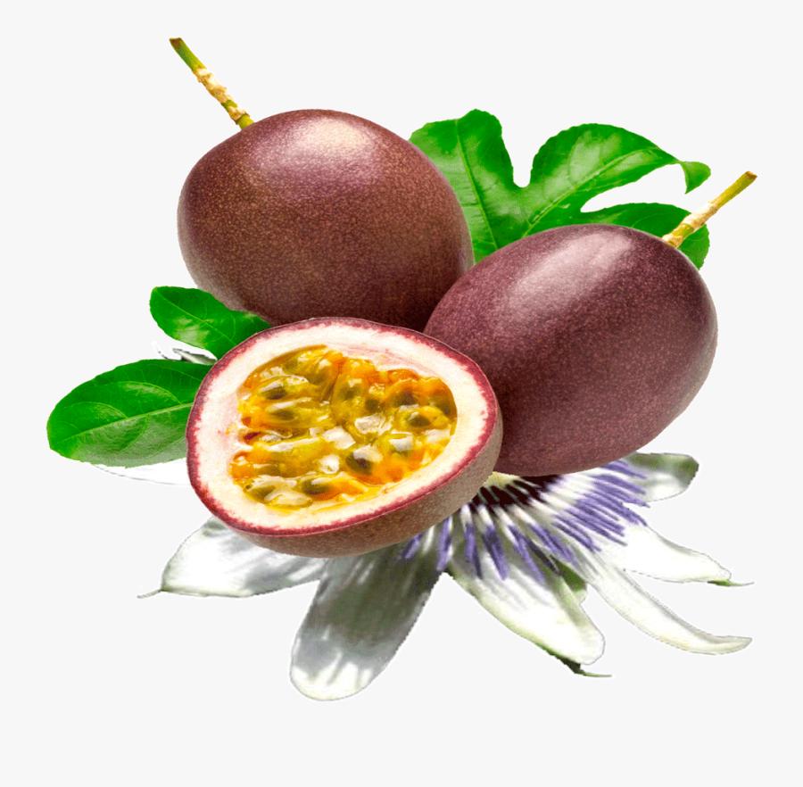 Fruit Clipart Passion Fruit - Passion Fruit Png, Transparent Clipart