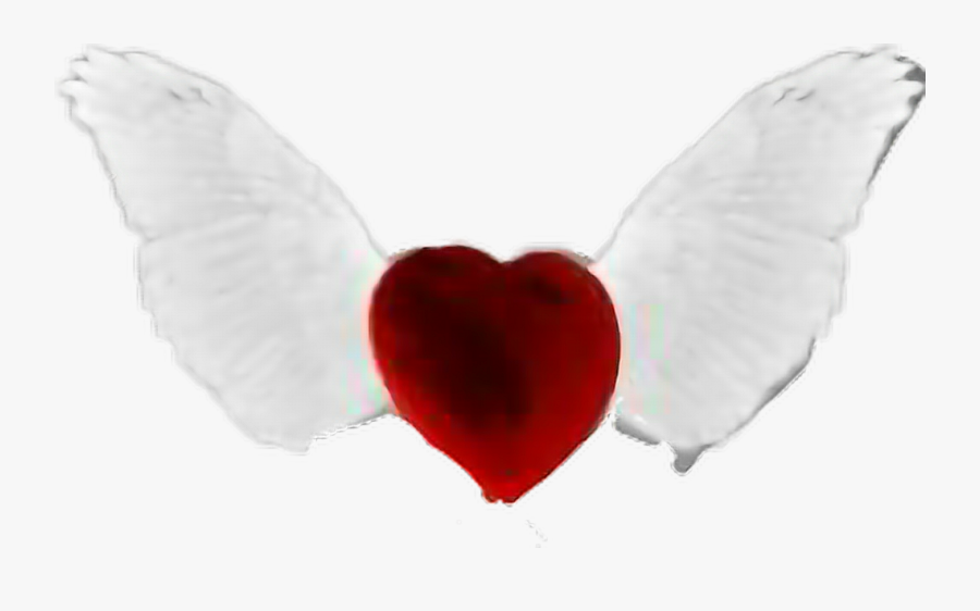 Transparent Heart With Wings Clipart - Love Heart With Wings, Transparent Clipart
