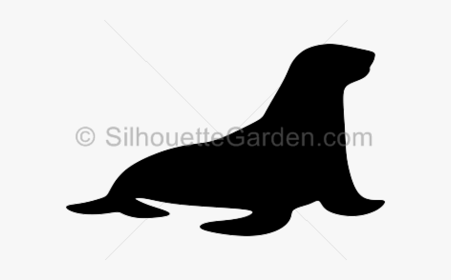 Transparent Seal Animal Png - Sea Lion Silhouette, Transparent Clipart