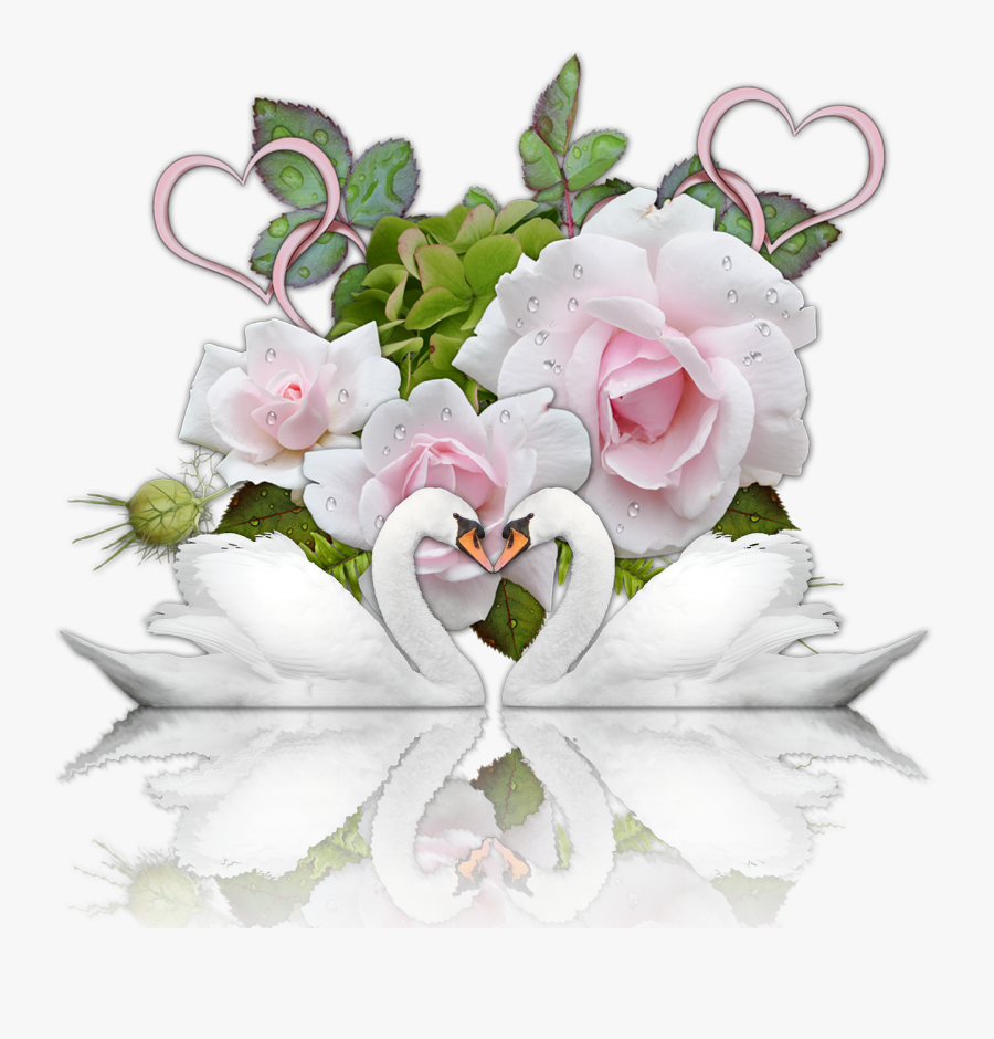 Romance Heart Swans Roses - Открытка С Днем Свадьбы Скачать, Transparent Clipart
