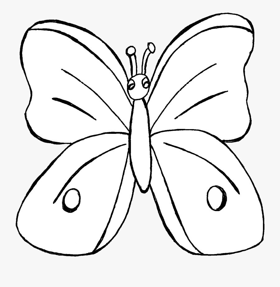 Toucan Clipart Rainforest Butterfly - Brush-footed Butterfly, Transparent Clipart