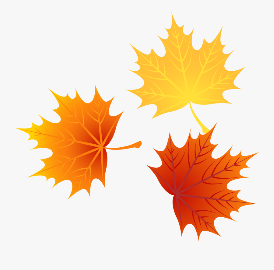 Autumn Euclidean Leaves Vector Leaf Png Image High - Cartoon Fall Leaves Png, Transparent Clipart