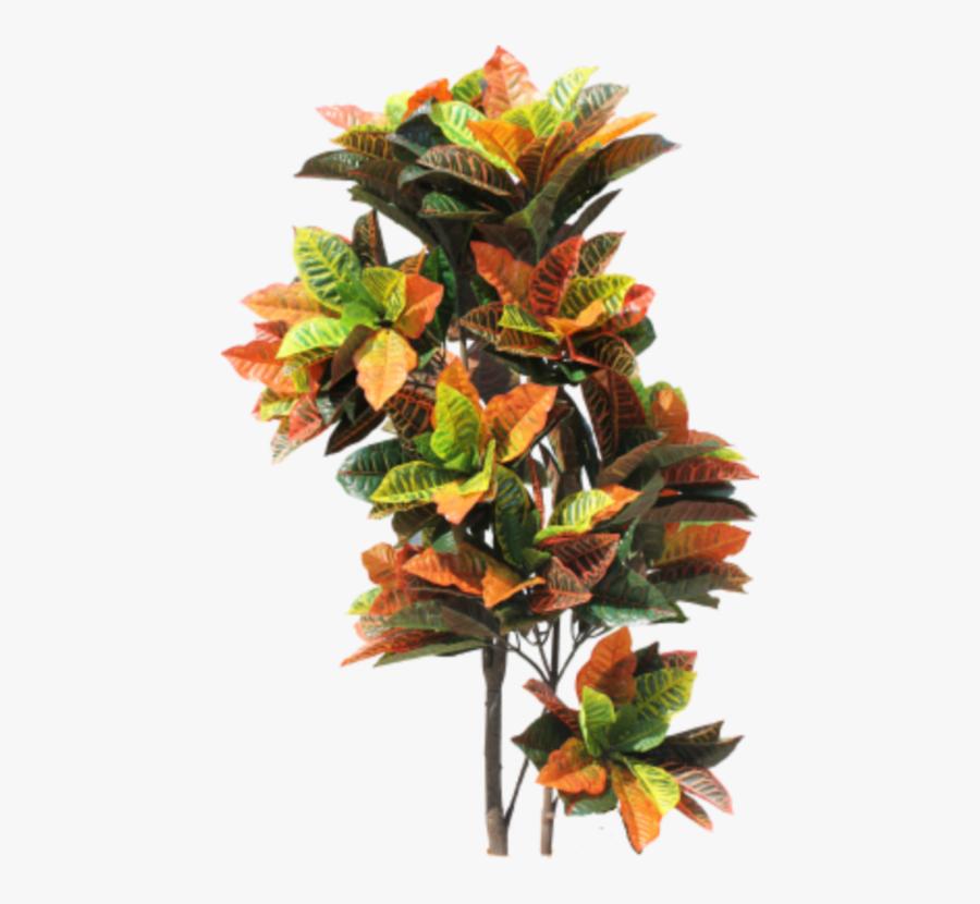 Transparent Jungle Plant Png - Tropical Bush Png, Transparent Clipart