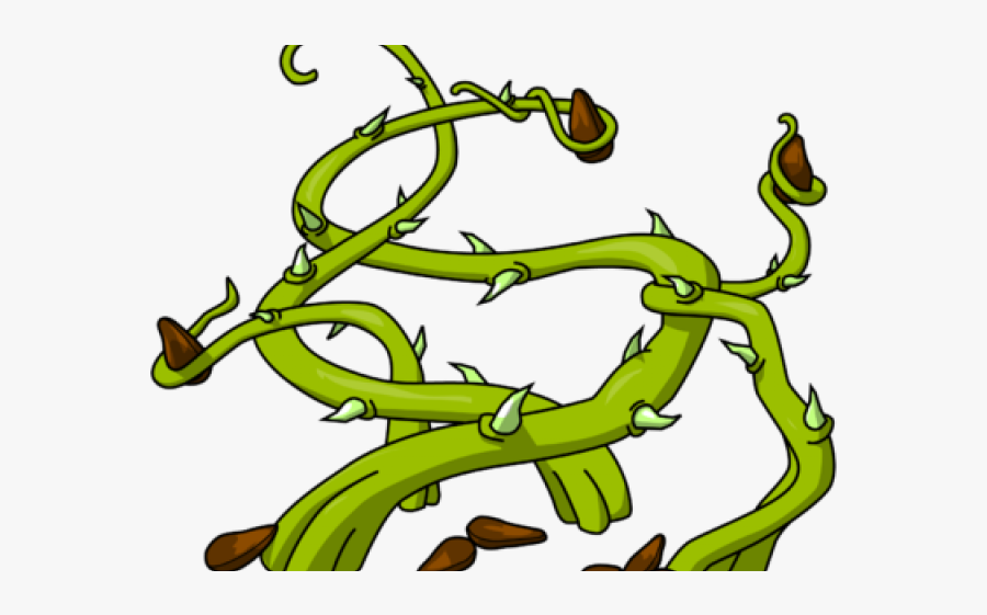 Seeds In Thorns, Transparent Clipart