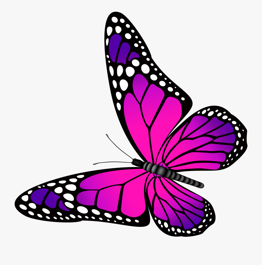 Clip Art Butter Fly Clip Art - Butterfly Pink And Purple, Transparent Clipart