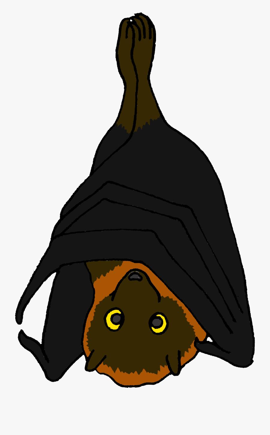 Transparent Fruit Bat Clipart - Cartoon Picture Of A Fruit Bat, Transparent Clipart