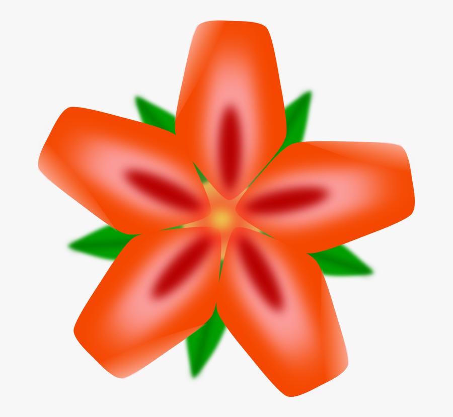 Fiori Vettoriali.Orange Petal Plant Immagini Vettoriali Gratis Fiori Free