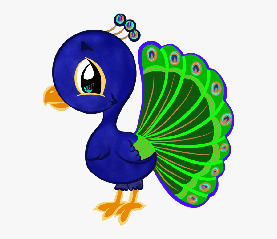 drawing peacocks huge freebie download for cartoon peacocks to draw free transparent clipart clipartkey drawing peacocks huge freebie download