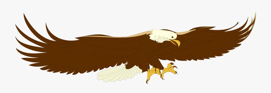 Top Bald Eagle Clipart Free Image - Flying Eagle Clip Art, Transparent Clipart