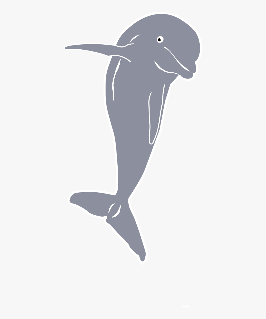 Dolphin Jumping, Front - Front Of Dolphin Png, Transparent Clipart