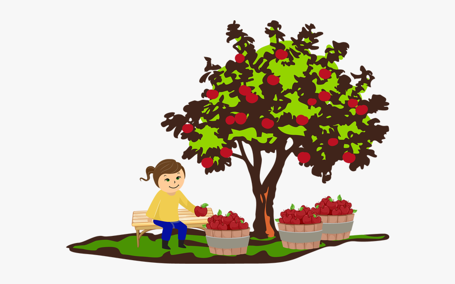 Apple Tree Fall Clipart, Transparent Clipart