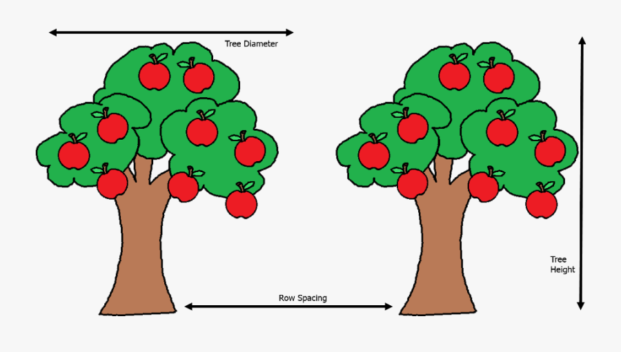 Uk Diseases Of Fruit - Apples On A Tree Clipart, Transparent Clipart