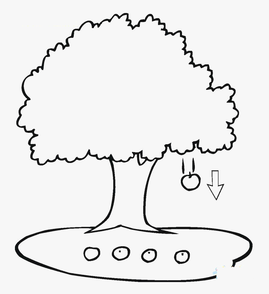 Transparent Falling Clipart - Apple Tree Coloring Page, Transparent Clipart