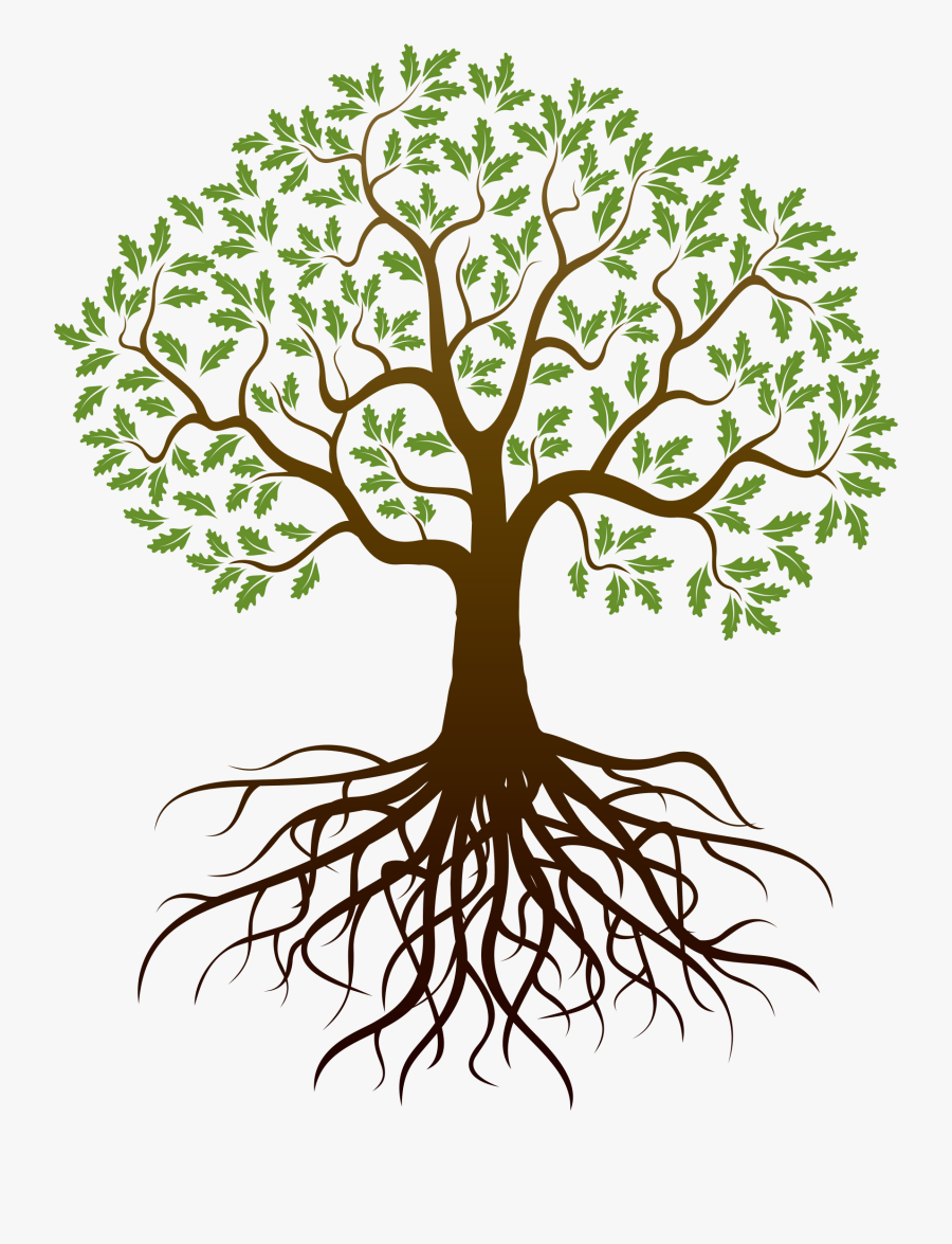 Old Drawing Apple Tree - Family Tree With Roots, Transparent Clipart