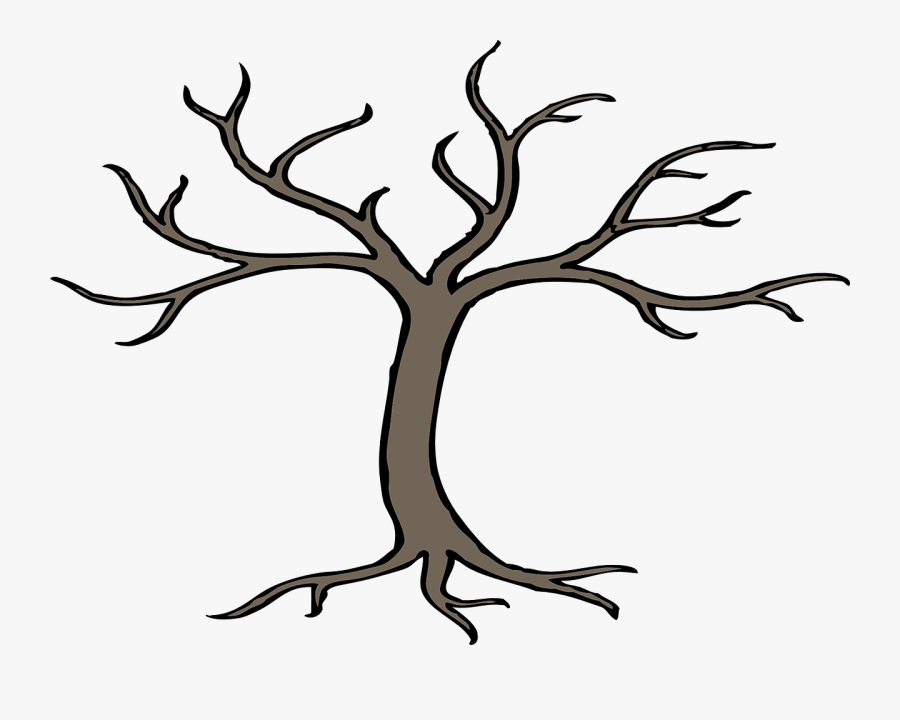 Tree, Branches, Bare, Root, Winter, Forest, Nature - Bare Tree Clip Art, Transparent Clipart