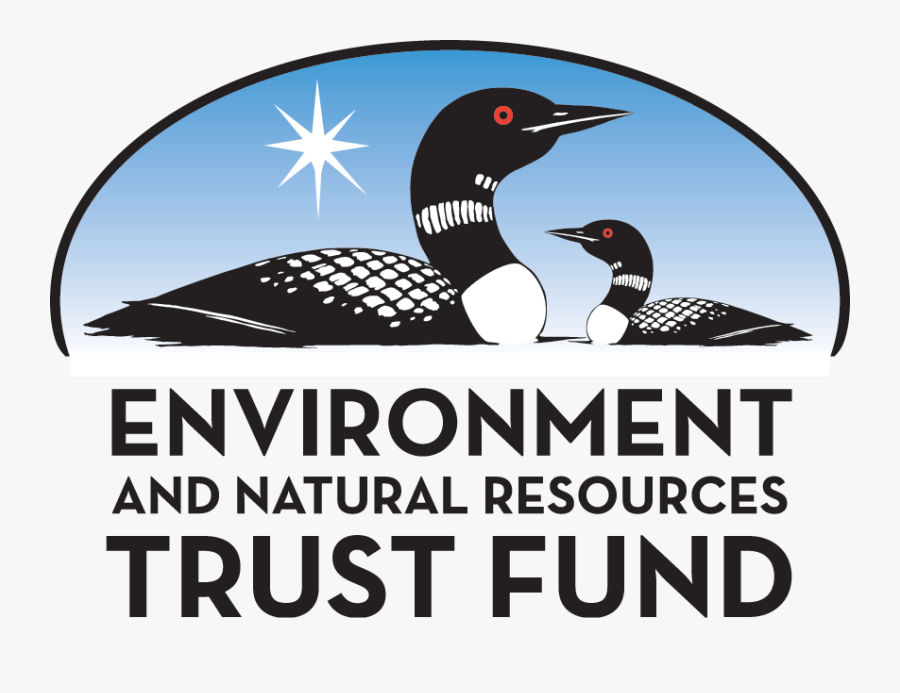 Environment And Natural Resources Trust Fund, Transparent Clipart
