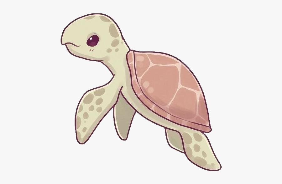 Turtle Sealife Sea Ocean Cute Kawaii Naomilord Hawksbill