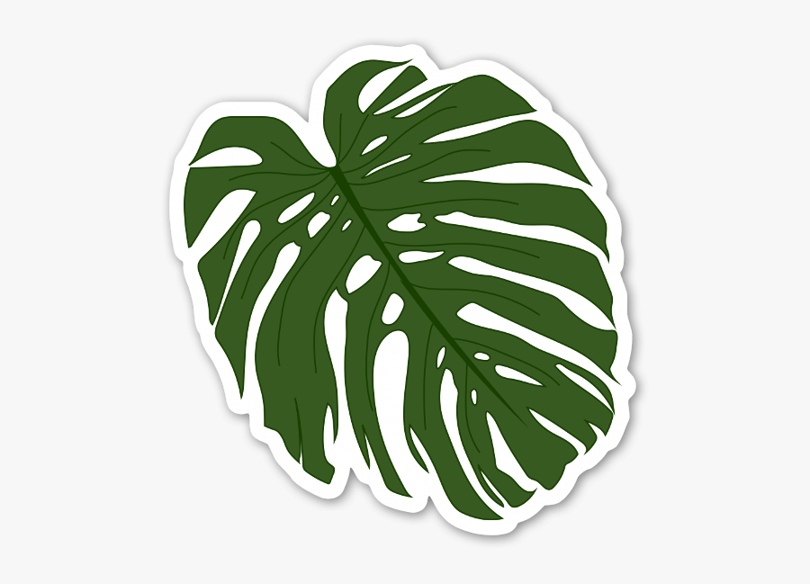 Palm Leaf Sticker - Palm Leaf Leaf Sticker, Transparent Clipart