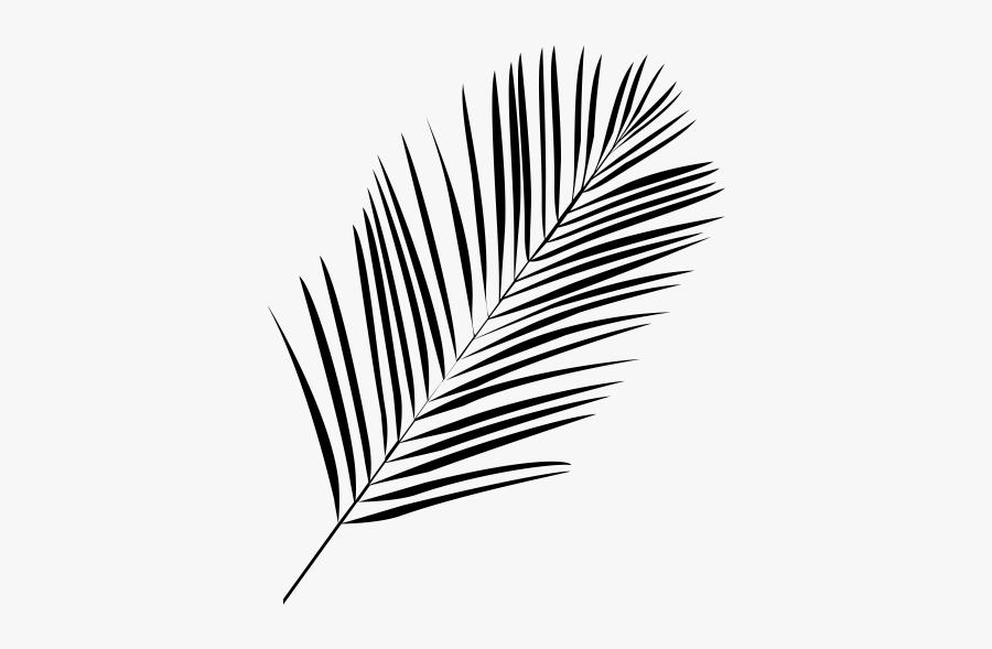 """  Class=""lazyload Lazyload Mirage Cloudzoom Featured - Palm Leaf Line Art, Transparent Clipart"