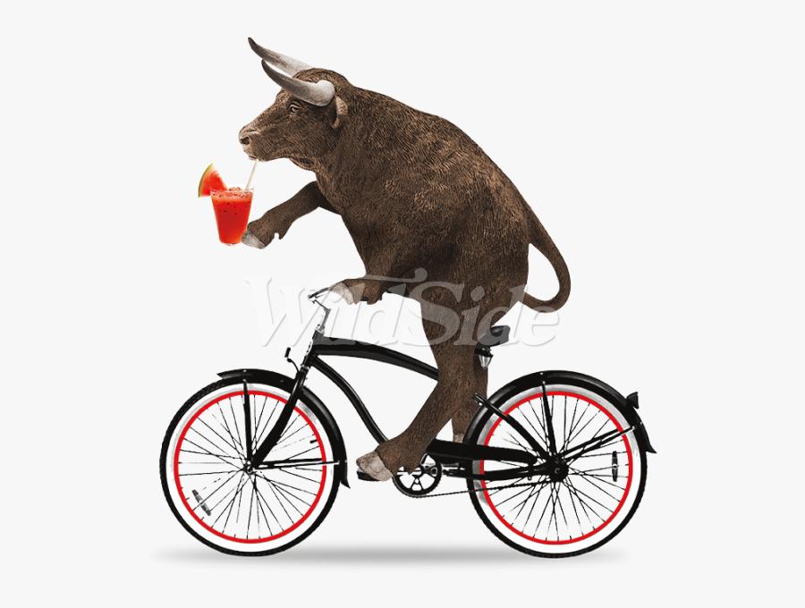Clipart Bike Beach Cruiser - Bull Riding A Bike, Transparent Clipart
