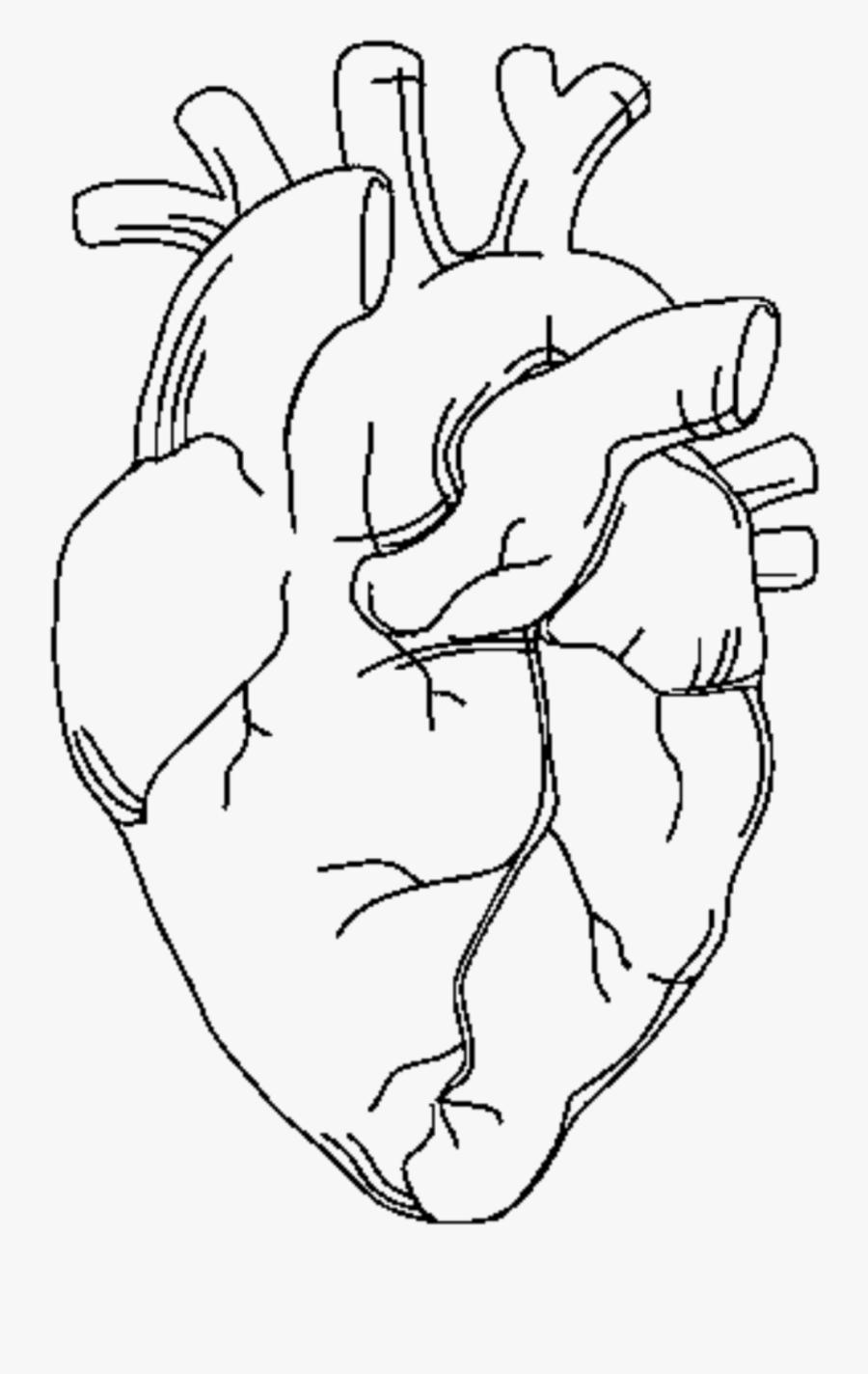 Colored Heart Cliparts - Cliparts Zone