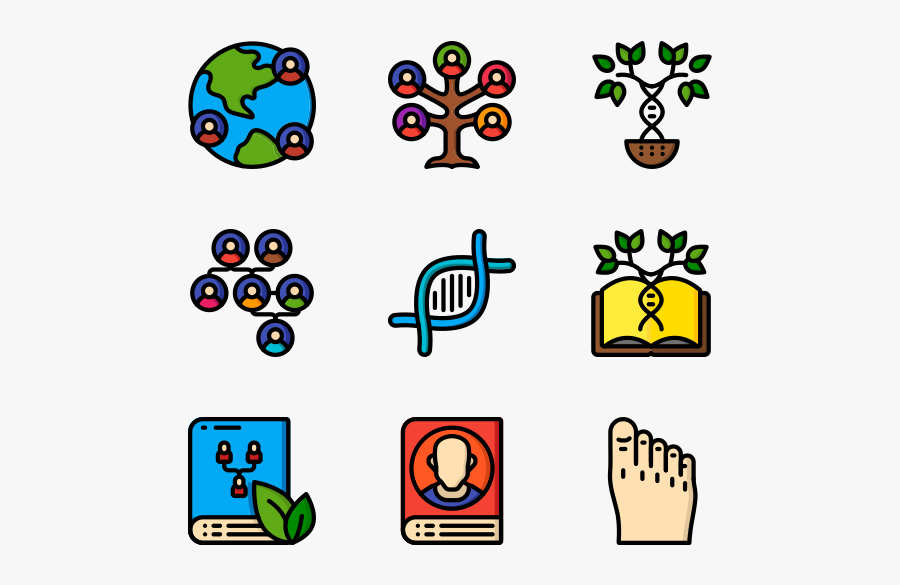 Ancestry - Pay Bill Icon, Transparent Clipart