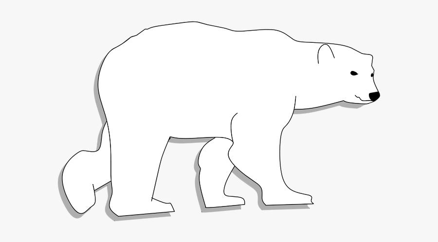 Bear, Animal Head, Animal, Animal Body - Polar Bear, Transparent Clipart