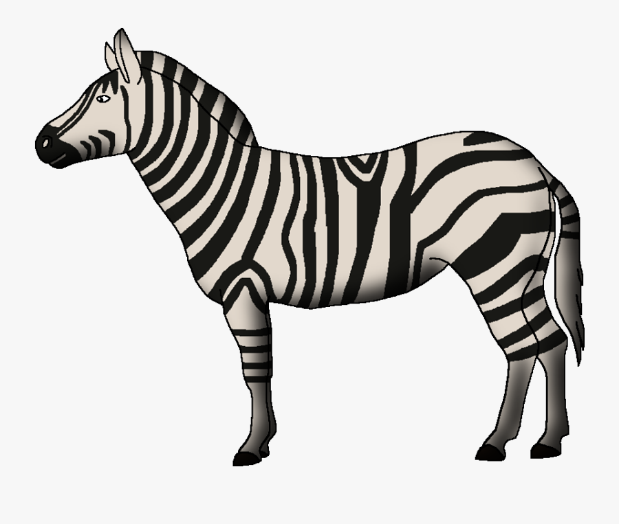Wildlife Animal Pedia Wiki - Zebra, Transparent Clipart