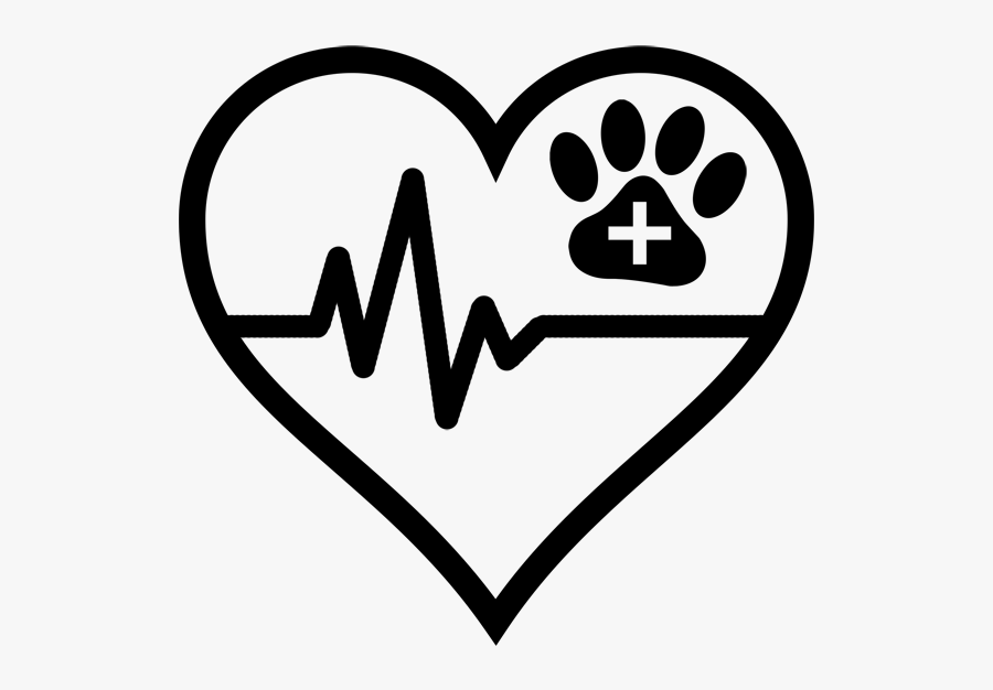 Cardiology Icon - Heart Icon, Transparent Clipart