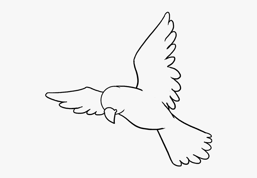 How To Draw Bird - Bird Drawing Easy, Transparent Clipart