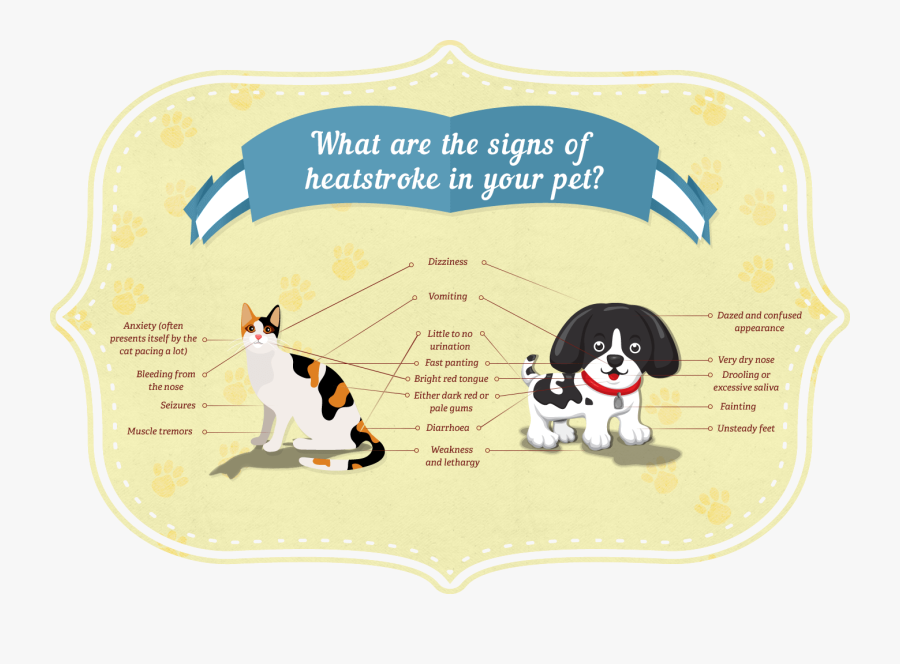 What Are The Signs Of Heatstroke In Your Pet - Heat Stroke In Cats And Dogs, Transparent Clipart