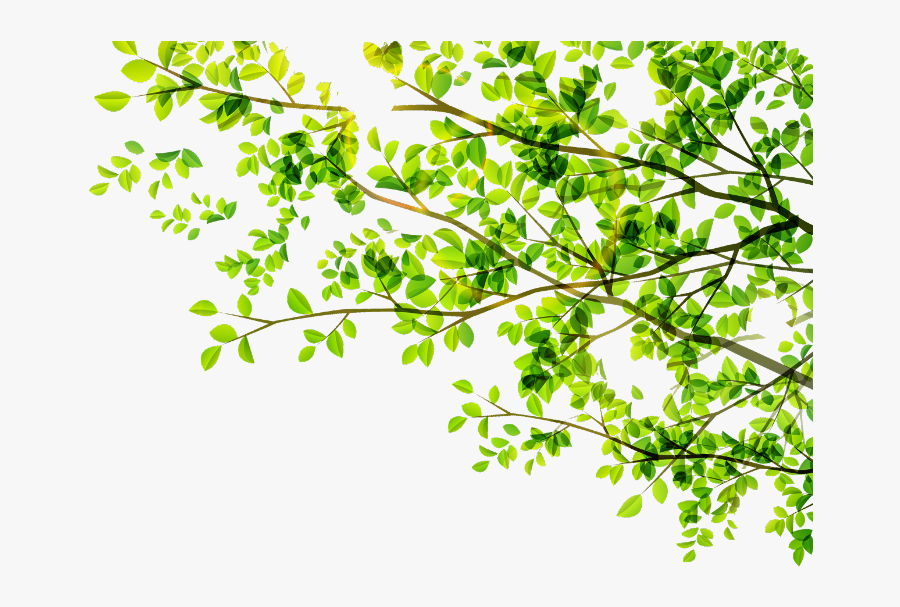 #leaves #leaf #green #tree #vector #freetoedit - Green Tree Vector Png, Transparent Clipart