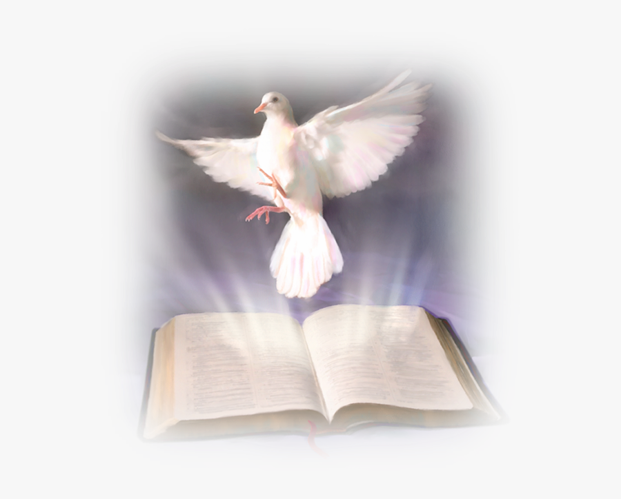 Confirmacion Paloma Png - Word Of God And The Holy Spirit, Transparent Clipart