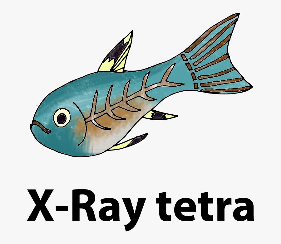 Xray Clipart Fish - ปลา พ ริ ส เท ล ล่า การ์ตูน, Transparent Clipart