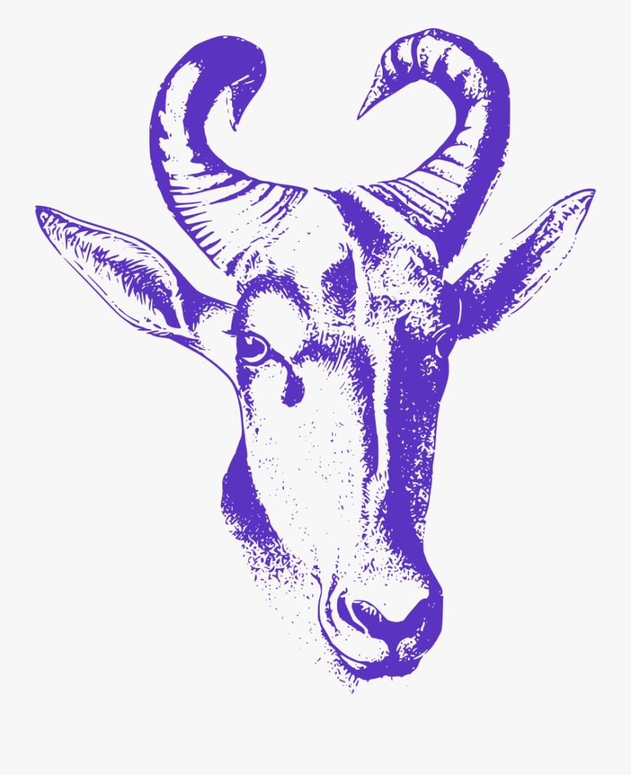 Gambar Sketsa Kepala Kambing Free Transparent Clipart