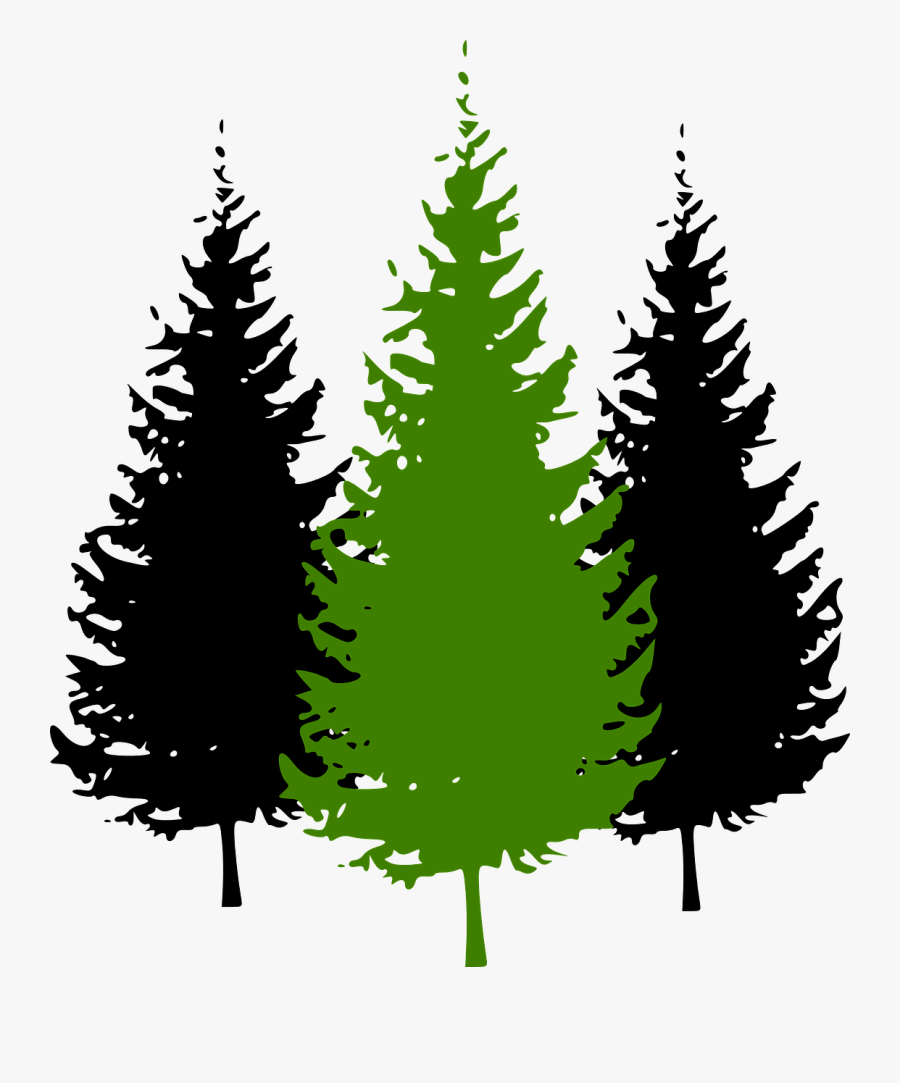 Cartoon Pine Tree Transparent Pine Trees Clipart Free Transparent Clipart Clipartkey Tree cartoon pine tree pine cartoon tree cartoon pine background element decoration symbol decorative trees cute ornament nature decor icon colorful natural christmas christmas tree christmas ant ornate pine trees backdrop template leaves multicolored emblem snow the amount of material. cartoon pine tree transparent pine