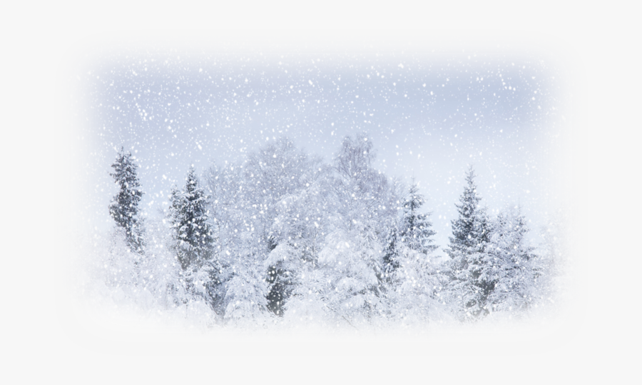 Snow Weather Winter Storm Blizzard - Background Images Of Snow, Transparent Clipart